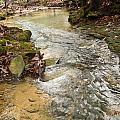 Lazy Mountain Stream by Douglas Barnett