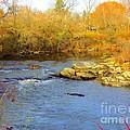Lazy River by Elizabeth Dow