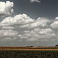 Lbj Ranch In Texas by Joan Carroll