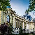 Le Petit Palais by Mark Llewellyn
