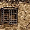 Leaded Glass Window In Sepia by Douglas Barnett
