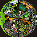 Leaf Collage Orb by Tikvah's Hope
