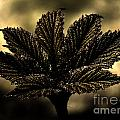 Leaf In A Special Light by Four Hands Art