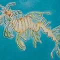Leafy Sea Dragon by Yabette Swank