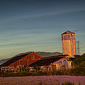 Leaning Silo  by Bill Gallagher