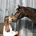 Leanna Abbey 8 by Life With Horses