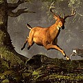 Leaping Stag by Daniel Eskridge