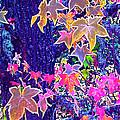 Leaves 1 by Pamela Cooper