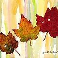 Leaves Of Fall by Van Bunch