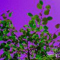 Leaves On A Purple Sky by Tahlula Arts