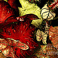 Leaves by Paul W Faust -  Impressions of Light