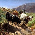 Leaving The Mountains by Pg Reproductions