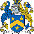 Lecky Coat Of Arms Irish by Heraldry
