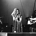 Led Zeppelin 1971 by Chris Walter