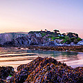 Lee Bay Sunrise by Dave Wilkinson