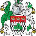 Leech Coat Of Arms Irish by Heraldry