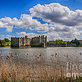Leeds Castle Moat  by Chris Thaxter