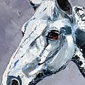 Legend - Sport Horse by Susan A Becker