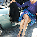 Leggy Pose  by Nancy Taylor