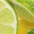 Lemon And Lime Slices In Water by Simon Bratt Photography LRPS