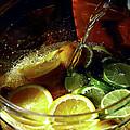 Lemon Limeade by Camille Lopez