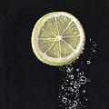 Lemon Up by Karen Stitt