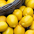 Lemons 01 by Rick Piper Photography