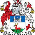 Lenaghan Coat Of Arms Irish by Heraldry