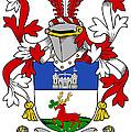 Lenihan Coat Of Arms Irish by Heraldry