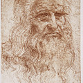 Leonard Da Vinci by Sheila Terry/science Photo Library