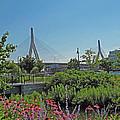 Leonard P Zakim Bridge From Cambridge by Barbara McDevitt
