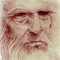 Leonardo by John F Willis