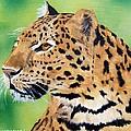 Leopard by Debbie LaFrance