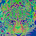 Leopard Eyes Green by Jane Schnetlage