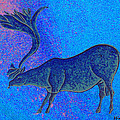 Les Combarelles Reindeer  by Asok Mukhopadhyay