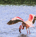 Lesser Flamingo Filter Feeding Lake Nakuru Kenya by Liz Leyden