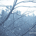 Let It Snow by Cheryl Baxter