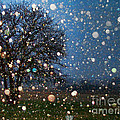 Let It Snow by Shannon Story