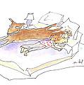 Let Sleeping Dogs Lie by Molly Brandenburg