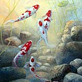 Let Us Be Koi by Gail Salitui