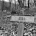 Letchworth Hidden Deaths by Art Dingo