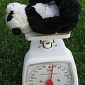 Let's Check My Weight Now by Ausra Huntington nee Paulauskaite
