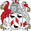 Levett Coat Of Arms II Irish by Heraldry