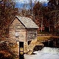 Levi Jackson Park Water Mill by Stephanie Frey