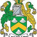 Levinge Coat Of Arms Irish by Heraldry