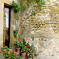 Levroux France Entrance by Randi Kuhne