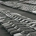 Leyland Cars Stockpiled As Sales Slump by Retro Images Archive