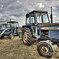Leyland Tractors  by Rob Hawkins