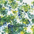 Lians Dandelions by Antony Galbraith