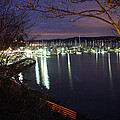 Liberty Bay At Night by Vicki Maheu